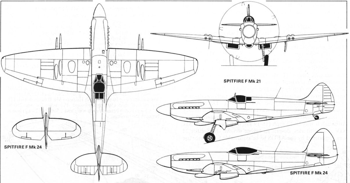 list of synonyms and antonyms of the word  spitfire 3 view