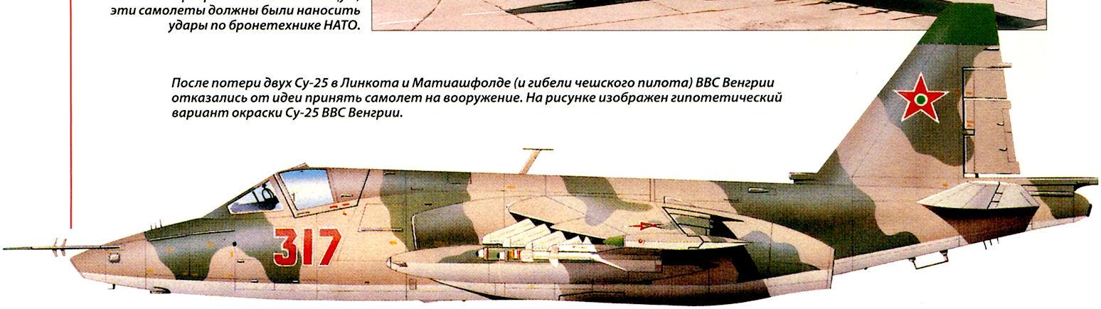 После потери двух Су-25 в